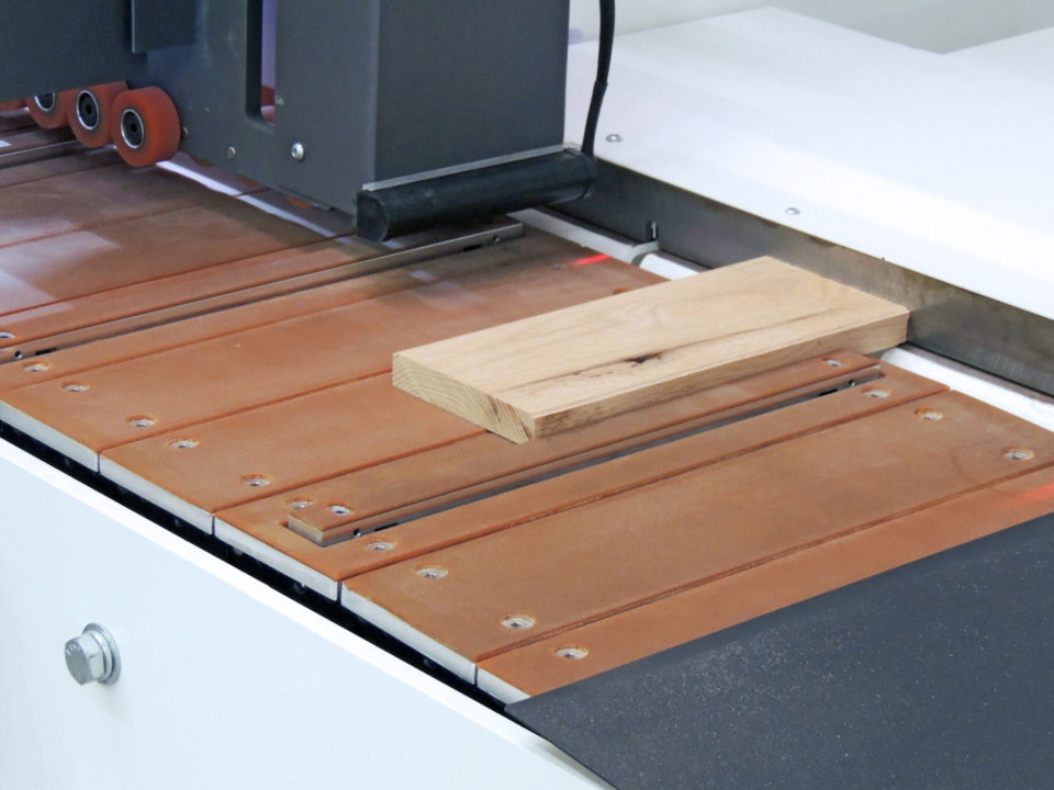 Single End Tenoner Infeed Close Up With Dogs